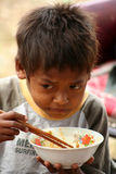 Boy eating lunch Royalty Free Stock Photo