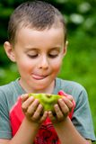 Boy eating papaya Royalty Free Stock Image