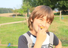 Boy eating a plum Royalty Free Stock Image