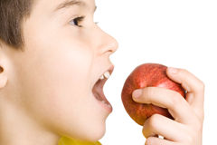 Boy eating red apple. Little boy eating a red apple royalty free stock images
