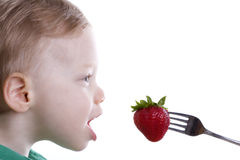 Boy eating strawberry. On a fork Royalty Free Stock Photo