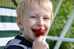 Boy eating strawberry. Cute blond boy eating strawberry Stock Photo