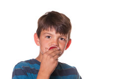 Boy eating strawberry. Younger boy eating a strawberry and looking at the camera Stock Image
