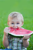 Boy eating watermelon Stock Images