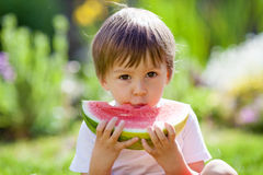 Boy, eating watermelon in the garden Stock Image