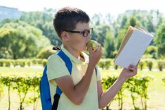 Boy eats an apple and reads an interesting book on his way home from school through the park royalty free stock photo
