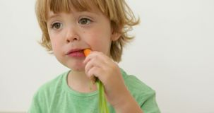 Boy eats carrot Isolated studio portrait. Three years old child boy bites carrot on white background stock video