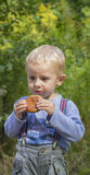 Boy eats cookies. At a picnic Royalty Free Stock Photography