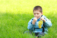 Boy eats grapes in meadow Royalty Free Stock Photos