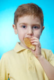 Boy eats homemade pie Stock Photo