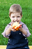 Boy eats in the park Royalty Free Stock Image