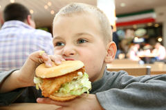 Boy eats the sandwich royalty free stock photography