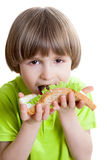 Boy eats a sandwich with green salad Royalty Free Stock Image