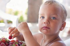 Boy eats strawberries. Royalty Free Stock Photography