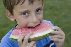 Boy eats watermelon stock photography
