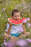 Boy eats a watermelon Stock Photography