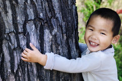 Boy embrace tree bole Royalty Free Stock Image