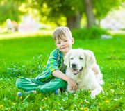 Boy embraces a golden retriever dog on the green grass.  stock photos