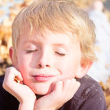 Boy Enjoying Autumn Fun Stock Photography
