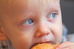 A boy enjoying cookie Stock Images