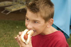 Boy Enjoying Hot Dog Stock Photography