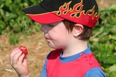 Boy enjoying a strawberry1. Boy eating a self-picked strawberry in a strawberry field stock images