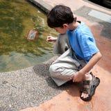 Boy enjoyingcatching small fish Stock Photo