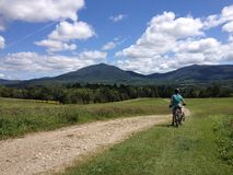Boy Enjoys The View On A Bike Ride Stock Image