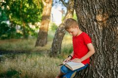 Boy enthusiastically reading a book in the Park . stock photos
