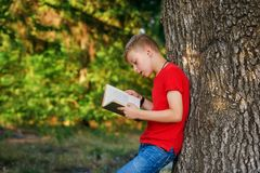 Boy enthusiastically reading a book in the Park . Boy reading a book in the Park . The concept of out-of-school education . Outdoor recreation royalty free stock photo