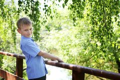 A boy of European appearance in a blue shirt on a background of green. Spring, sunny day stock images