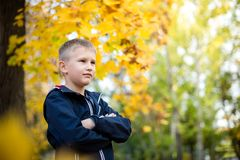 A boy of European appearance in the park. Yellow blurred background with bokeh. Autumn day royalty free stock image