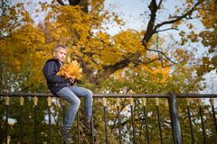A boy of European appearance is sitting on the fence. Yellow blurred background. Bottom view. Autumn day stock image