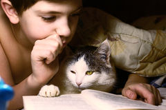 Boy evening read book with cat. Preteen handsome boy evening read book with cat in the bed before sleep Royalty Free Stock Image