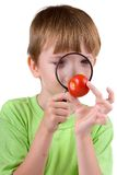 Boy examines a tomato with a magnifying glass Royalty Free Stock Image