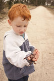 Boy examining handful of worms. Young redhead boy examining handful of worms on country lane Stock Photo