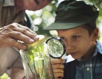 Boy examining a plant with a magnifying glass Royalty Free Stock Image