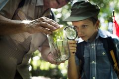 Boy examining a plant with a magnifying glass Royalty Free Stock Photo