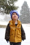 Boy experiencing wonder of winter Stock Photos