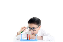 Boy experimental in the lab Royalty Free Stock Photo