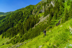 Boy explores nature on the mountain Stock Photography