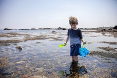 Boy exploring tide pools on New Hampshire coast. Curious Four year old boy exploring rocky tide pools on the coast of New Hampshire looking for sea life stock image