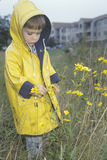 A boy  exploring the wildflowers on a rainy day, Washington, D.C. Royalty Free Stock Image