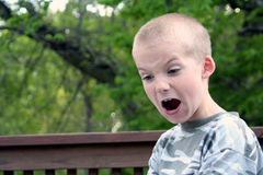 Boy Expressions 4. Boy with disgusted expression stock images