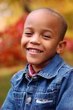 Boy in Fall Royalty Free Stock Photos