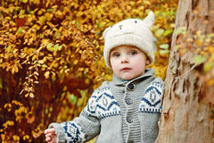 Boy in fall forest Royalty Free Stock Image