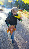 A boy  fall leaves on a sunny day Royalty Free Stock Photography