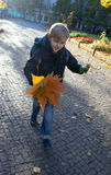 A boy  fall leaves on a sunny day Royalty Free Stock Photo