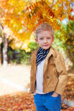 Boy at fall time Stock Photography