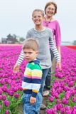 Boy with family in the purple tulips field Stock Photography